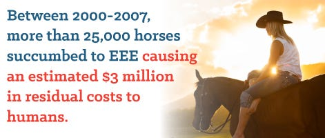 Horses killed from EEE a mosquito borne disease