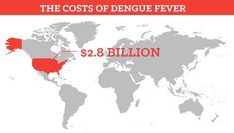 economic impact from Dengue Fever
