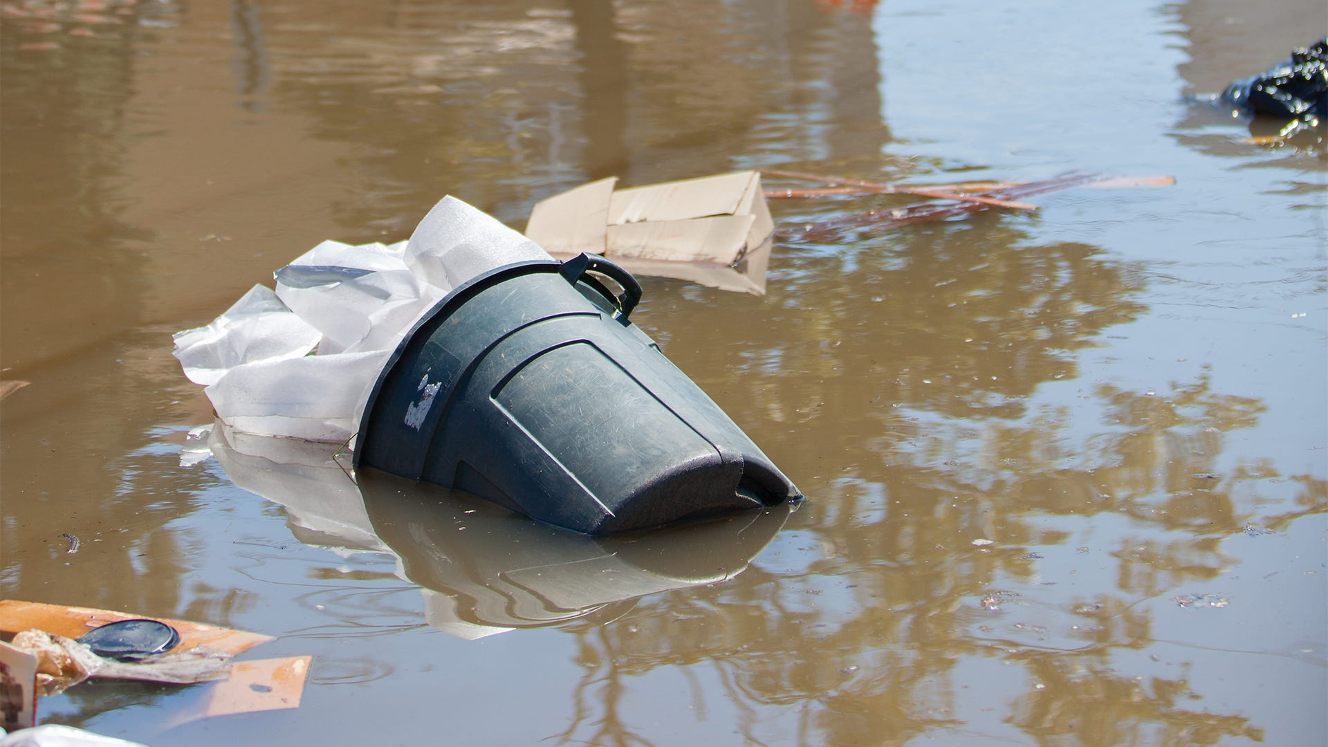 Flooding Checklist: How to Stop a Mosquito Outbreak