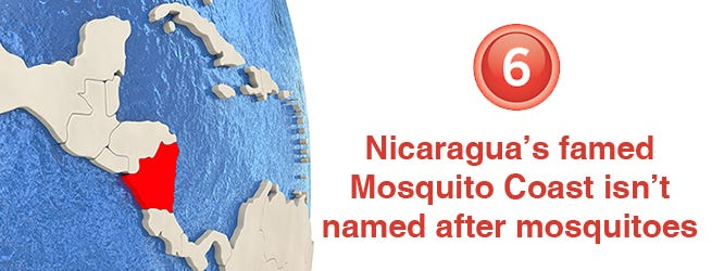 What does mosquito mean
