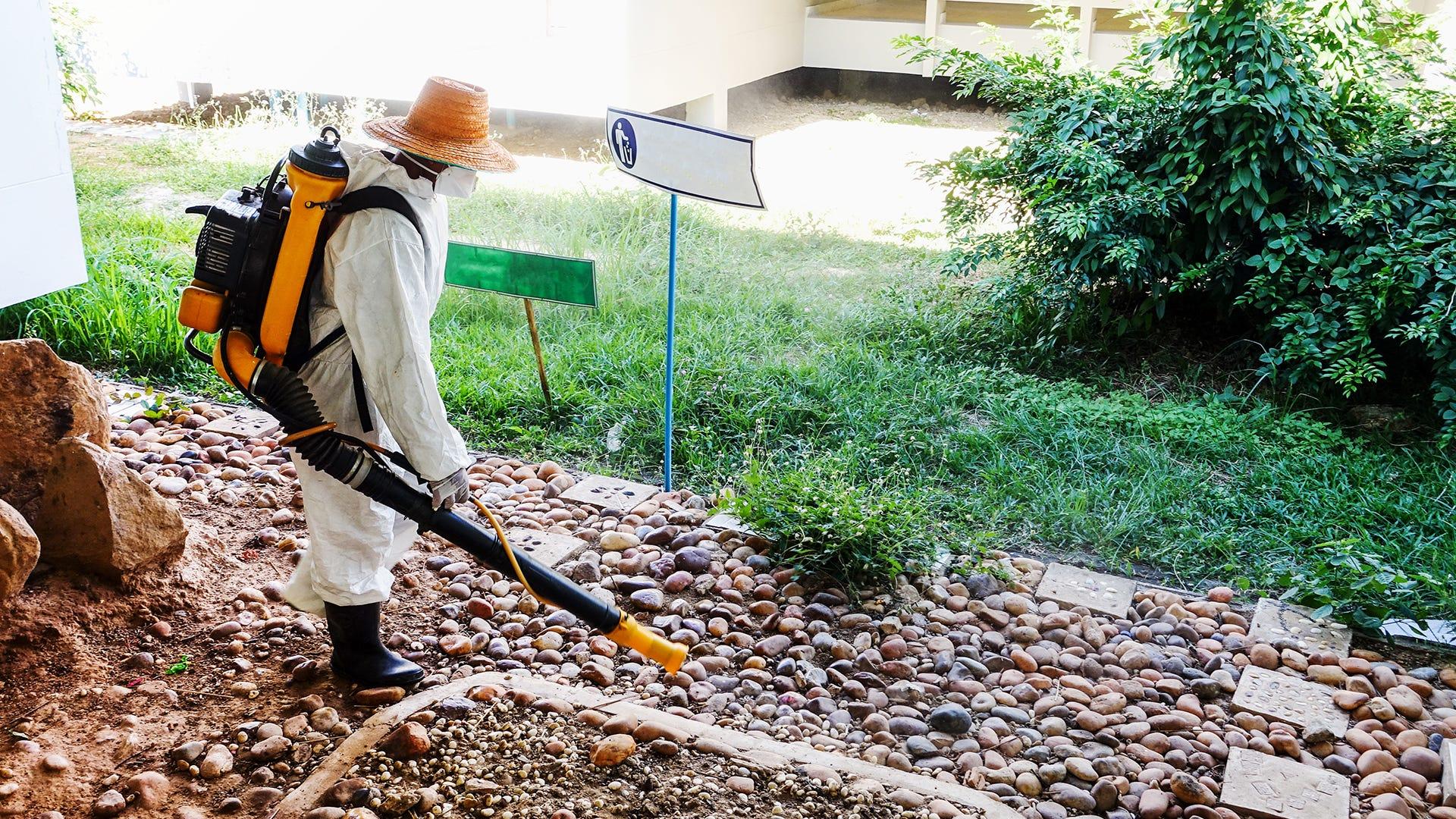 Mosquito Spray Treatment vs. Mosquito Traps