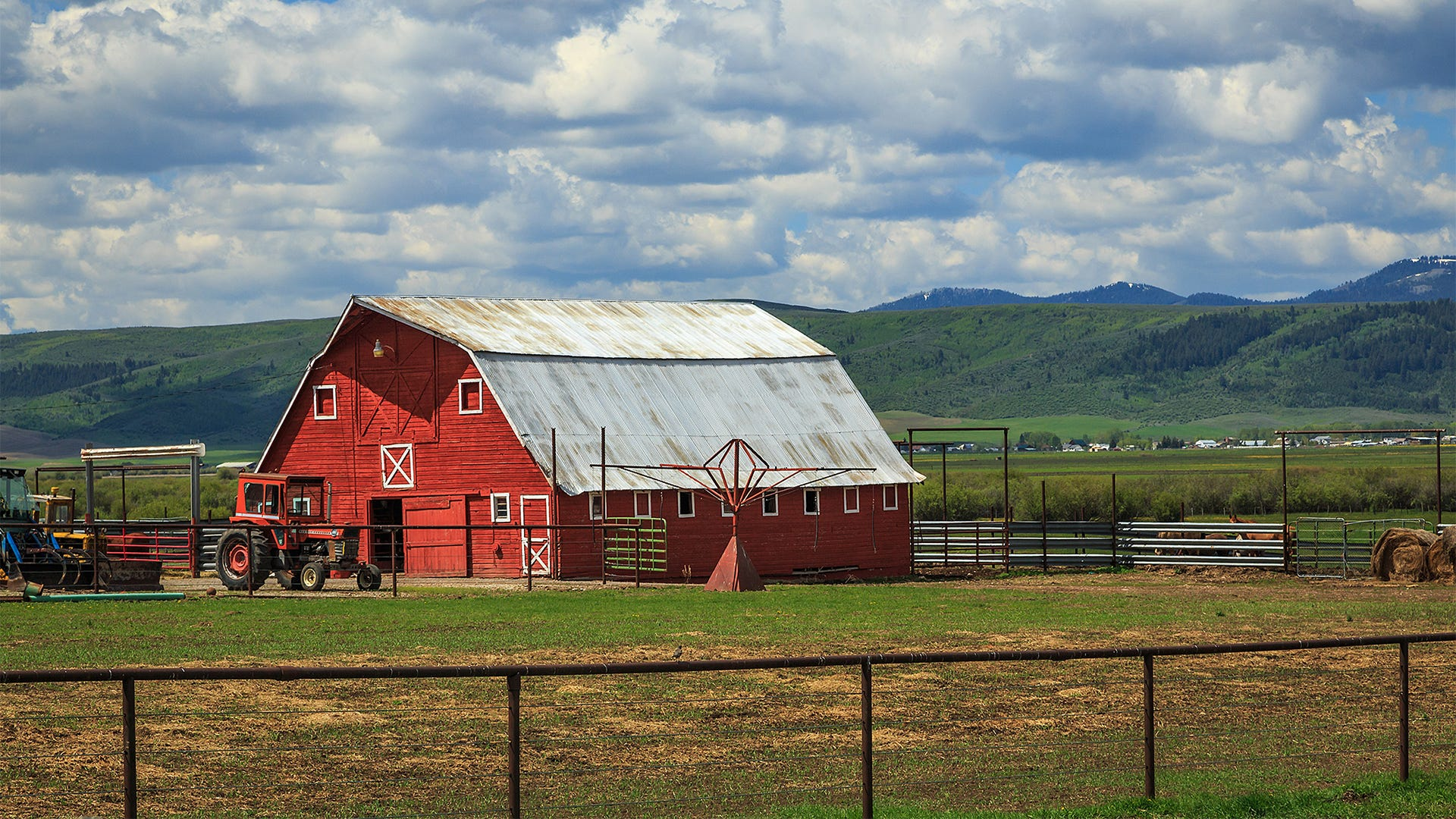 The Ultimate Guide to Mosquito Management on the Farm