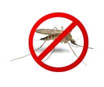 bad_mosquito