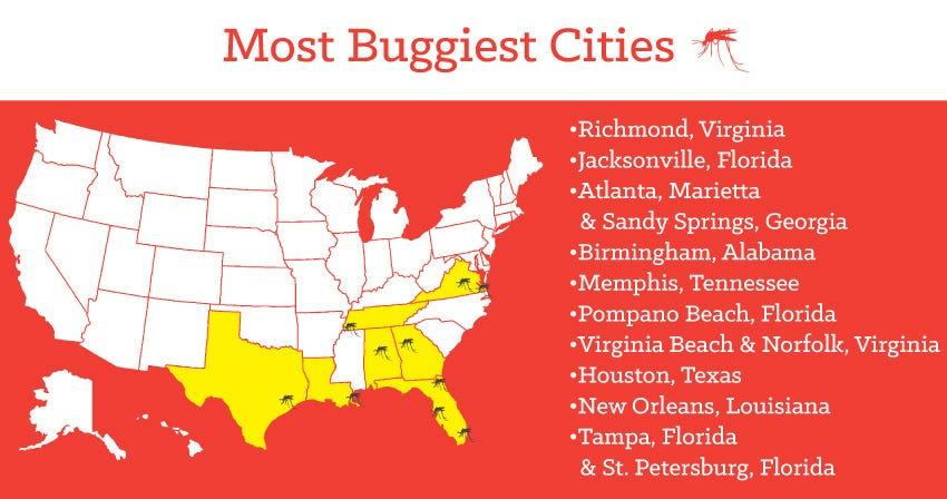 buggiest-cities