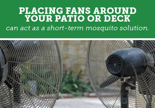 Patio Fans For Bug Control