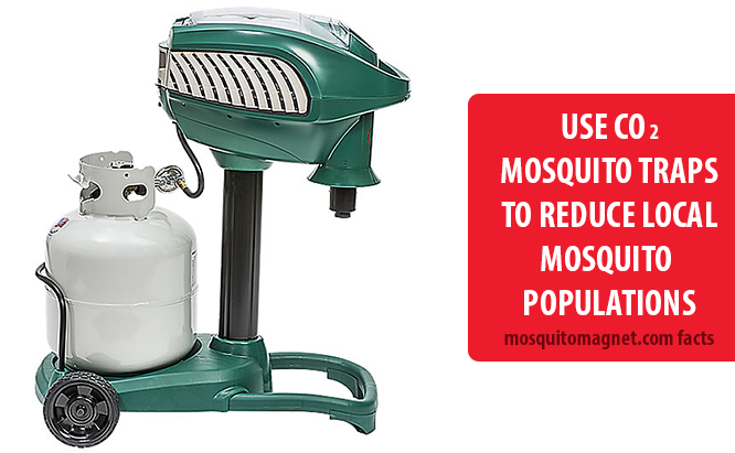 landscaping for mosquitoes add CO2 mosquito traps