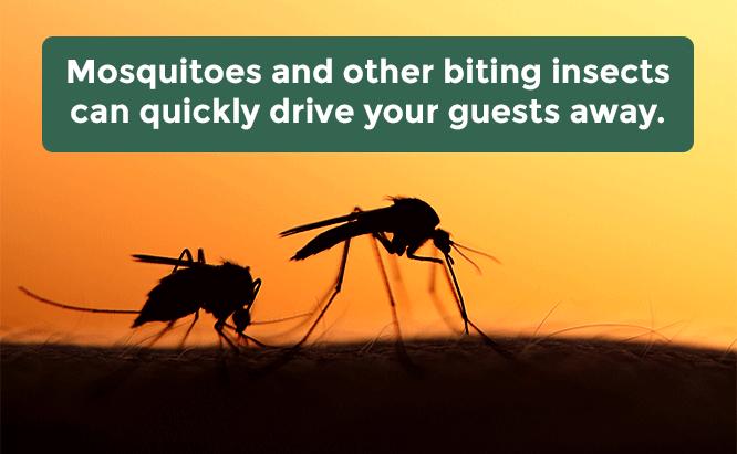 resort mosquito control