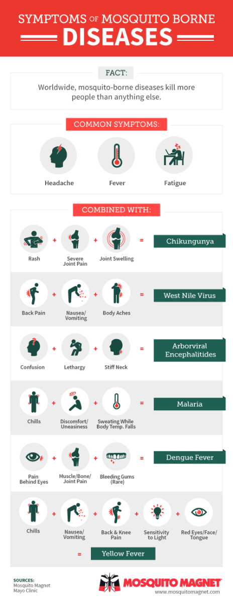 Symptoms You Shouldn't Ignore If You've Been Bitten by a Mosquito