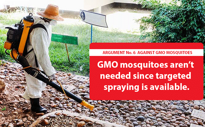 Cons of GMO Mosquitoes
