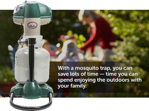 Outdoor mosquito traps